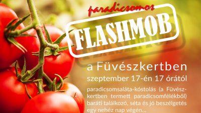 Paradicsomos Flashmob