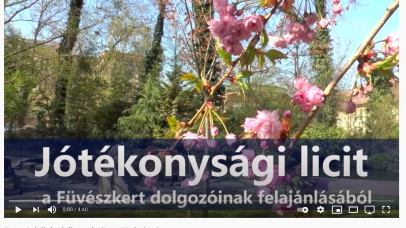 Tavaszi túrák és jótékonysági licit
