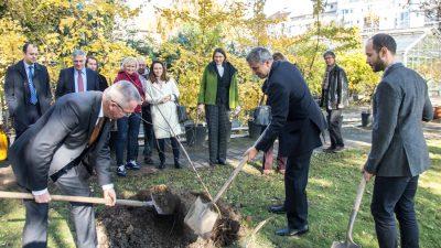 Nyírfa ültetés a Belarusz Köztársaság Nagykövetségével