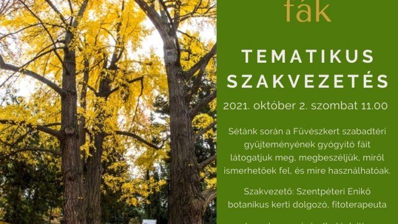 Gyógyító fák - tematikus szakvezetés, október 2-án, szombaton 11-től
